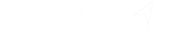 Visagram's Company logo